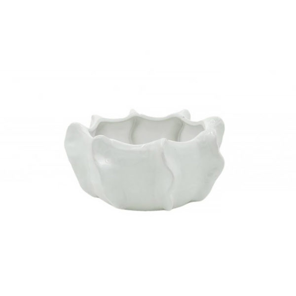 Solero Bowl Cache